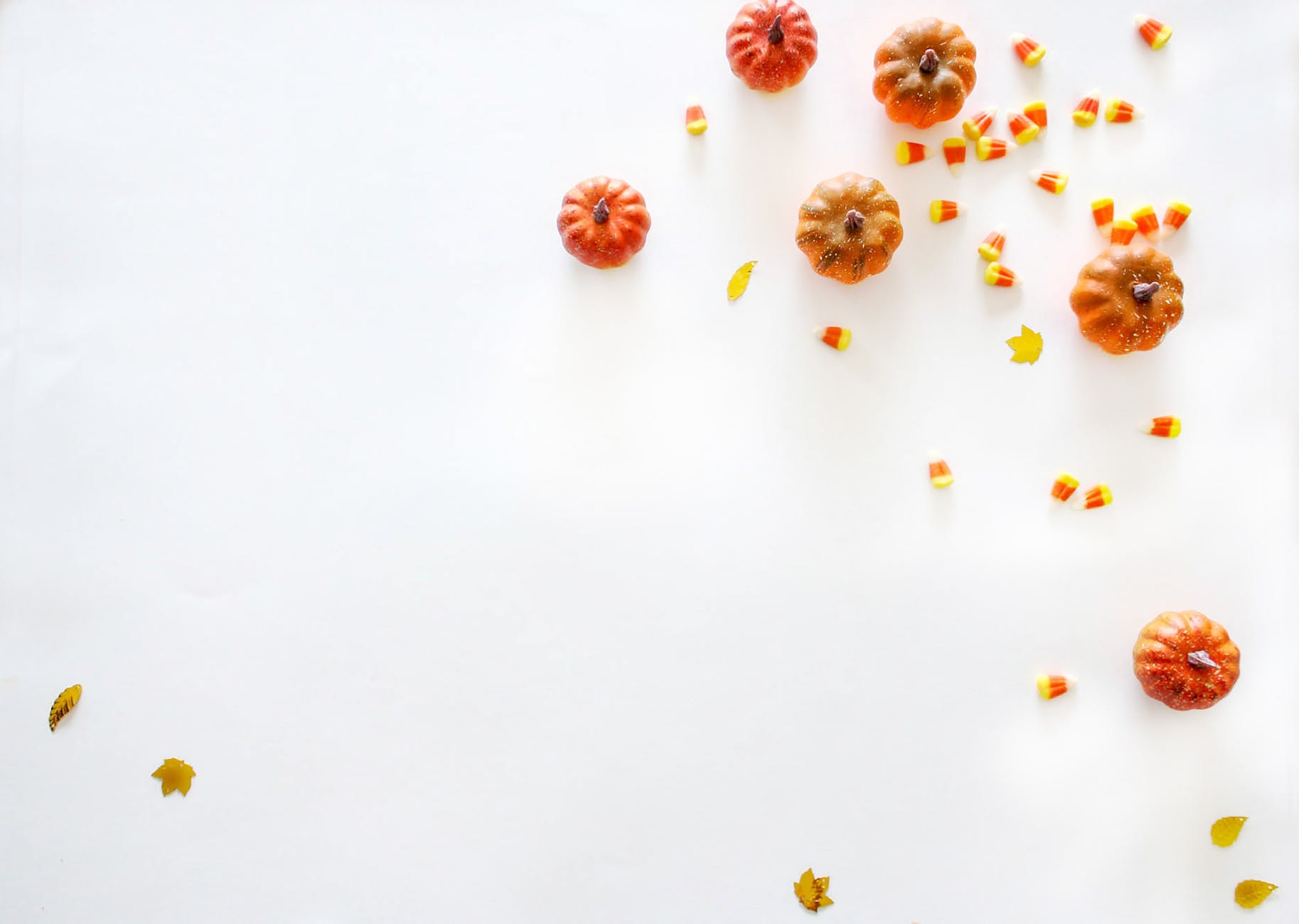 orange pumpkins on white surface
